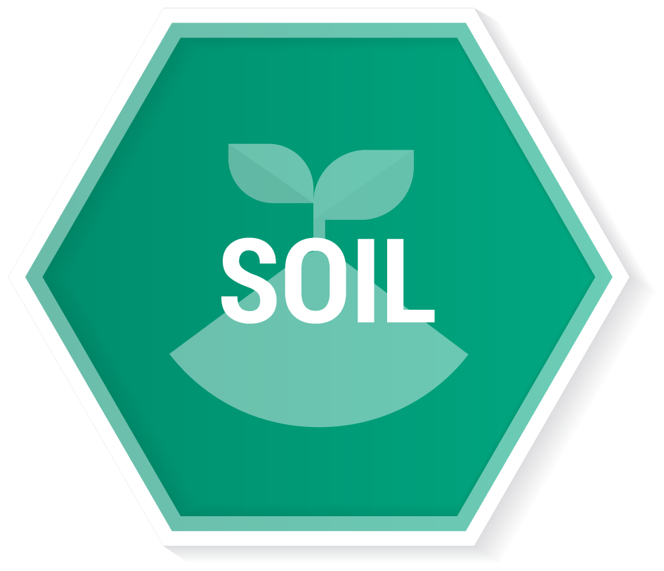 button front-Soil